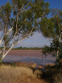 Gascoyne river levels