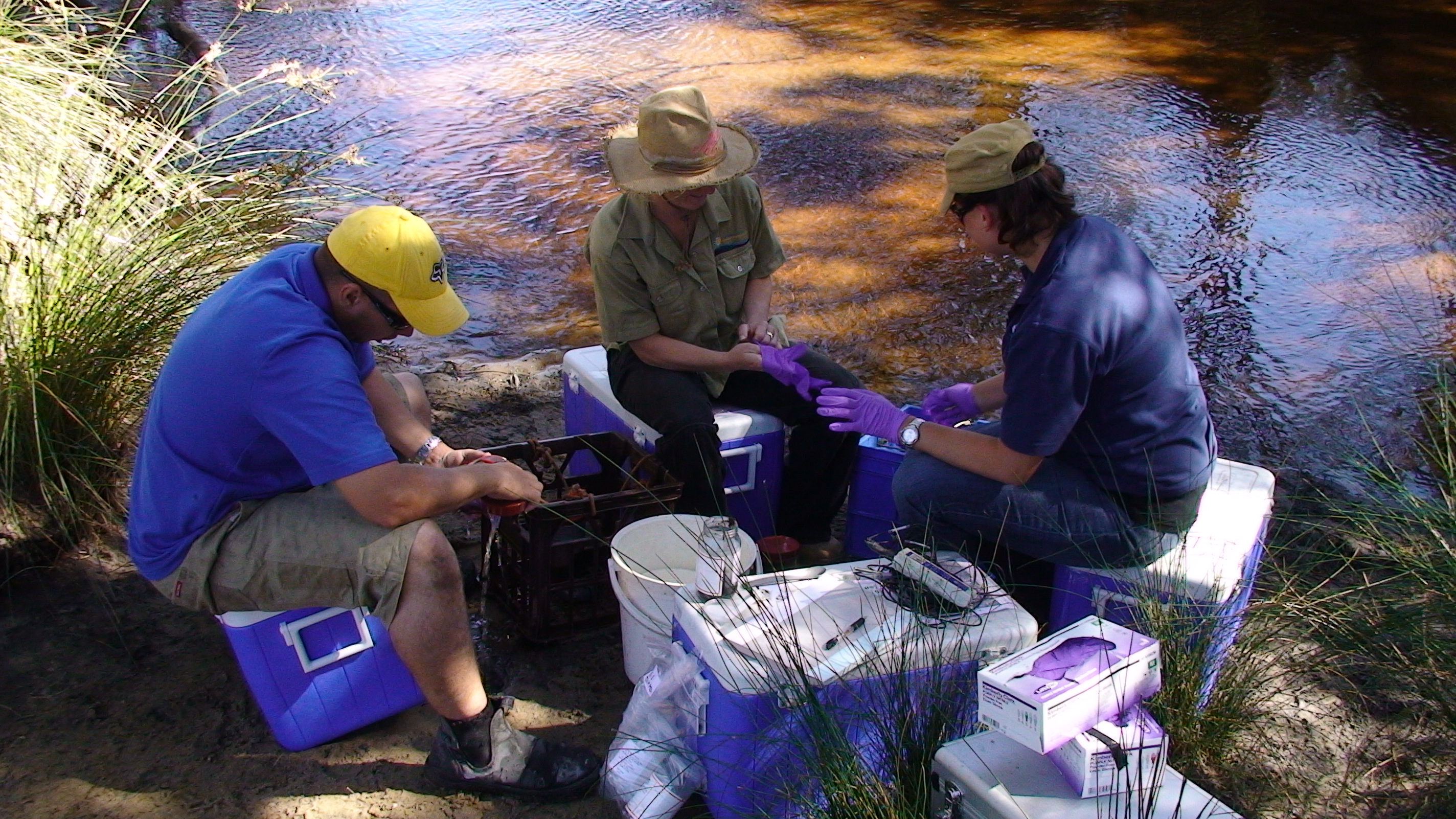 Collecting Sediment Samples