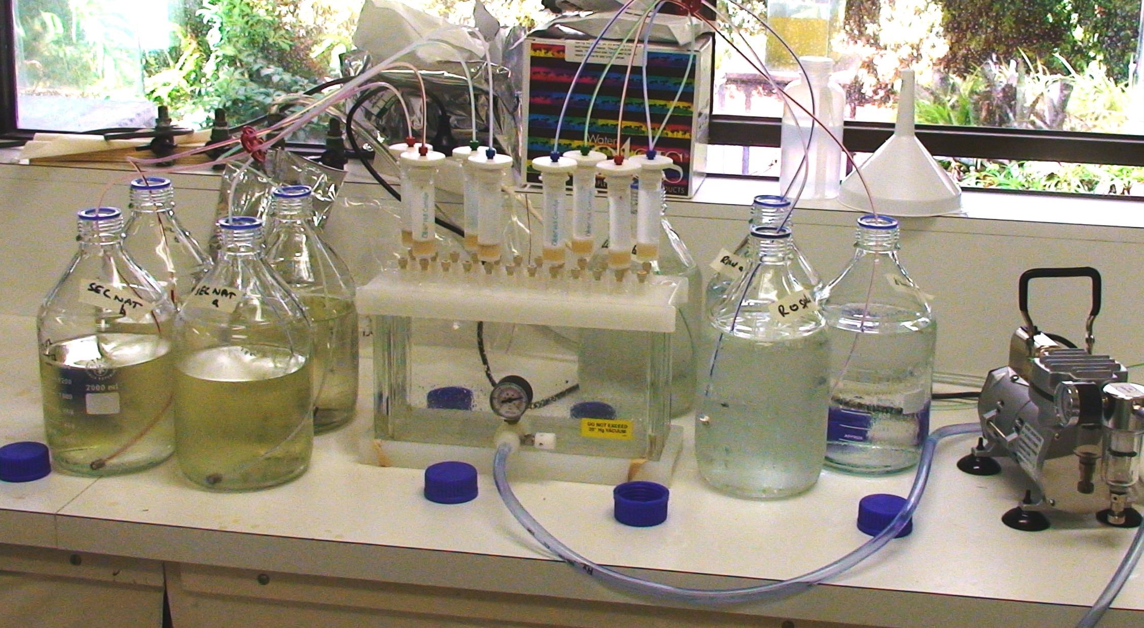 An ecotoxicology laboratory analysis setup
