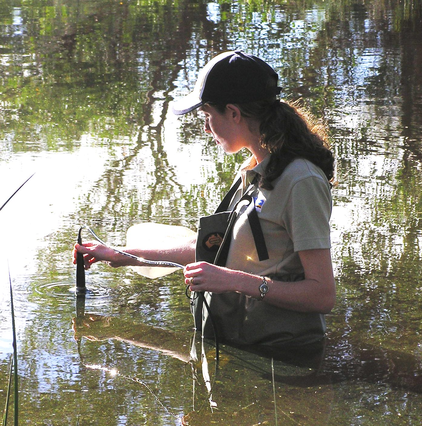 Water quality sampling at Liege Street Wetland