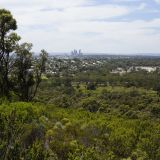 View of Perth City from Reabold Hill